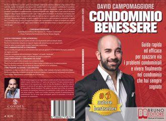 David Campomaggiore, Condominio Benessere: il Bestseller su come vivere in armonia nel proprio condominio